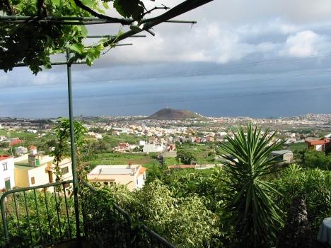 Finca mit Haus und Bodega in Los Realejos.