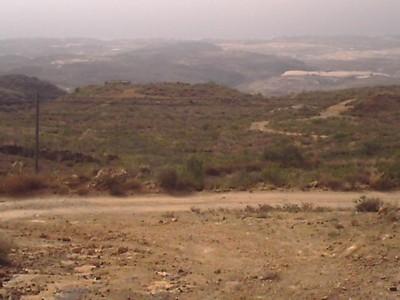 Arico - El Rio - Finca