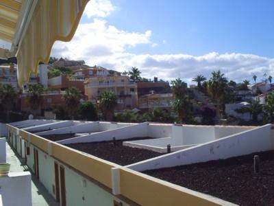Playa de las Americas - Studio