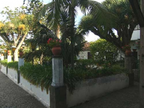 Haus mit land in Puerto de la Cruz