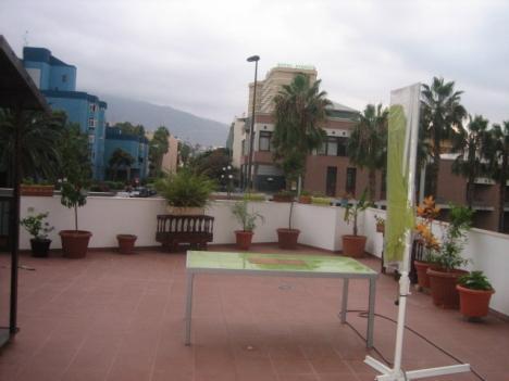 Zentral gelegen neue Wohnung  Immobilie zum Kauf - Paluum