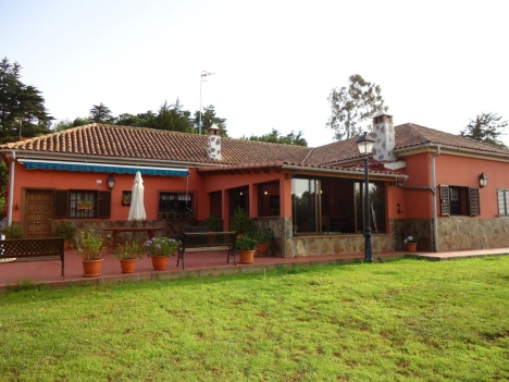 Finca mit Grosses neues Haus Immobilie zum Kauf - Paluum
