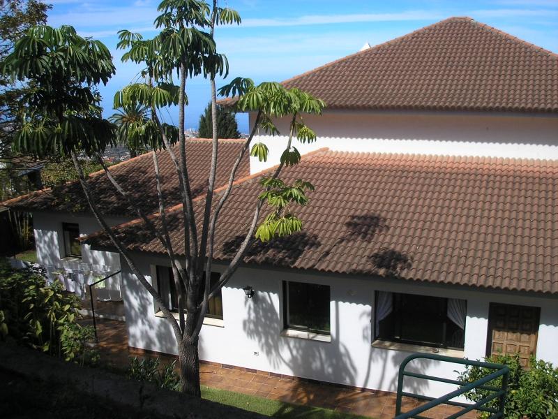 Sehr grosses Haus / Grundstuck Inklusive kleine Kneipe/ Bodega. Immobilie zum Kauf - Paluum