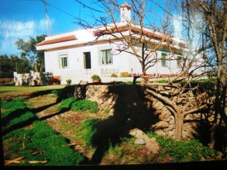 Kanarischen Haus mit Grundstück zum Pflanzen! Immobilie zum Kauf - Paluum