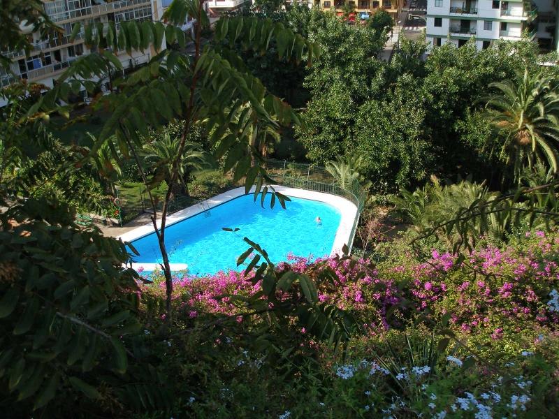 Wohnung mit Pool im Stadtzentrum! Immobilie zur Miete - Paluum